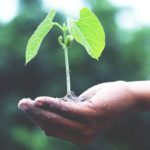 5 Savvy Ways to Grow and Expand Your Business